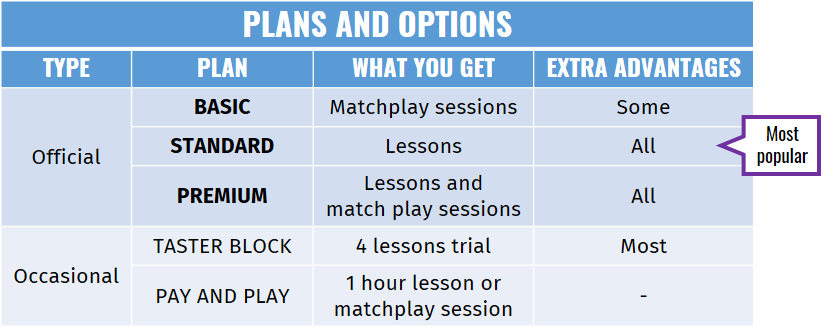 GTA Plans and options